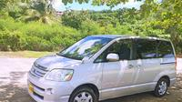 Shared Arrival Transfer: Maurice Bishop International Airport to Hotel