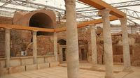 Private Tour: Ephesus and Terrace Houses Tour from Kusadasi