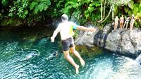 Suva Shore Excursion: Waiyanitu Waterfall Trek and Fijian Village Tour with Buffet Lunch