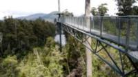 Small-group tour from Hobart to Mt. Wellington and Tahune AirWalk