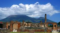 Private Tour: Half-Day Round Trip to Pompeii from Naples