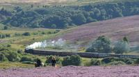 Steam Trains Whitby and the Moors from York
