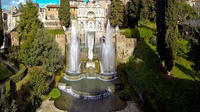 Full-Day Private Shore Excursion: Tivoli Gardens with Wine Tasting from Civ