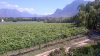 Wine Safari and Franschhoek Motor Museum Experience Guided Private Shore Excursion from Cape Town