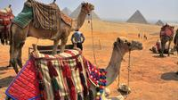 Shore Excursion: Day Trip from the Port of Alexandria to Cairo Private Car Transfers
