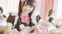 MAID CAFE experience with maid guide in Akihabara