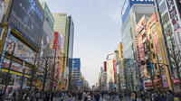 Private Custom Full Day Tokyo Manga Anime Tour by Chartered Vehicle