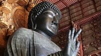 Private Full-Day Nara Custom Tour from Osaka by Chartered Vehicle