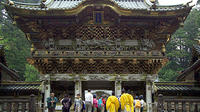 Private Tour: Nikko Guided Full-Day Tour from Tokyo by Limited Express Train