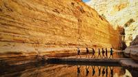 Private Tour: Highlights of the Negev From Jerusalem