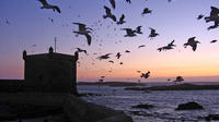 4-Day Essaouira Guided Tour including Astapor