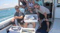 Offshore Reef or Sport Fishing Charter from Cronulla, Sydney City Fishing - Guides & Charters
