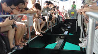 Glass Bottom Boat Tour from Hurghada