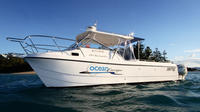 Private Half-Day or Full Day Hamilton Island or Airlie Beach Charter, Airlie Beach Tours and Sightseeing