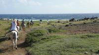 Aruba Horseback Riding Tour to Hidden Lagoon image 1