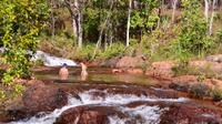 Litchfield Day Tour from Darwin Including Wangi Falls Florence Falls and Buley Rockhole