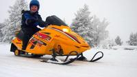 Lapland Family Snowmobile Safari From Rovaniemi