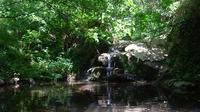 Montseny Guided Hiking Tour from Barcelona with Organic-friendly Lunch