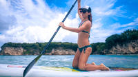 Paddle Board or Kayak Tour from San Juan