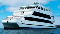 Galapagos Islands Last-Minute Cruise