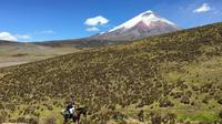 Private Horseback Riding at Cotopaxi Volcano from Quito image 1