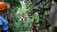Belize City Shore Excursion: Canopy Zipline Tour