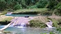 Blue Hole and River Gully Rainforest Adventure Tour from Runaway Bay