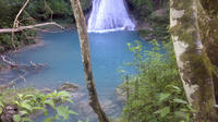 Private Blue Hole and River Gully Rainforest Adventure Tour from Montego Bay