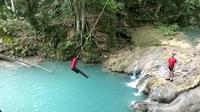 Private Full-Day Tour to the Blue Hole and River Gully Rain Forest from Kingston