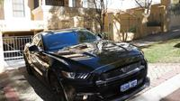 Wineries and Wildlife - With Mustang V8 Fastback