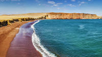 Private Tour to Paracas Reserve