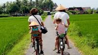 Private Tour: Full-Day Authentic Village Tour on an Antique Style Bicycle from Yogyakarta