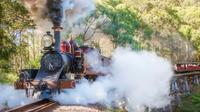Puffing Billy and Mount Dandenong Private Tour image 1