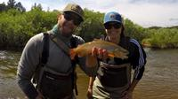Denver Fly Fishing Wade Trip
