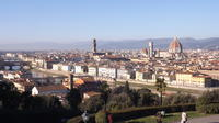 Florence Tour with Panoramic Views and Aperitivo