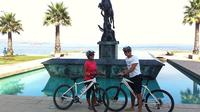 Full-Day Private Bike Tour of Concon Viña del Mar and Valparaiso from Santiago