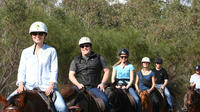 Neergabby Horse Riding River Adventure, Perth Horse Riding & Horse Trekking