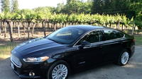 Private Transfer: Silicon Valley to San Francisco Airport Private Car Transfers