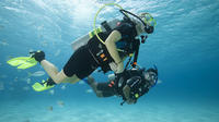 PADI 2 Dives Package in Tenerife with Transfers