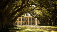 Combo Oak Alley Plantation and 6 or 9 Passenger Airboat Tour from New Orleans