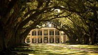 Combo Oak Alley Plantation and 6-Passenger Airboat Tour