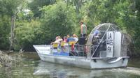 Large Airboat Swamp Tour