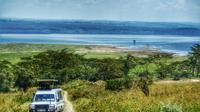 Private Tour of Lake Nakuru National Park with Optional Boat Ride from Nairobi