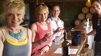 Guided Wine Tasting Tour of Temecula