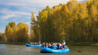 21-Mile Combo: Snake River-Scenic and Whitewater Trip