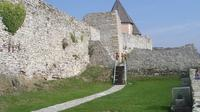 Medvedgrad Fortress: Half Day Guided Walking Tour from Zagreb