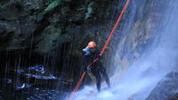 Private Blue Mountains Abseiling and Canyoning Day Trip from Sydney, Sydney City Adventure & Extreme Sports