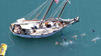 Whitsundays Day Sail Blue Pearl and Langford Reef, Airlie Beach Sailing Charters & Windsurfing