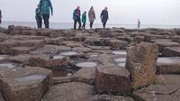 Small Group Giant's Causeway Day Tour from Belfast