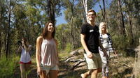 Blue Mountains Day Trip - Sydney -